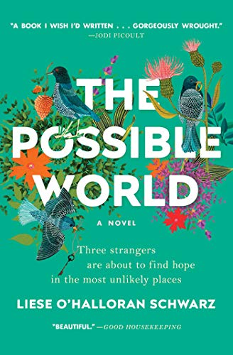 The Possible World: A Novel by Liese O'Halloran Schwarz