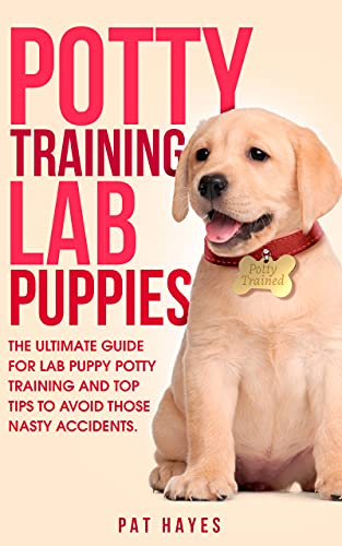 POTTY TRAINING LAB PUPPIES by PAT HAYES